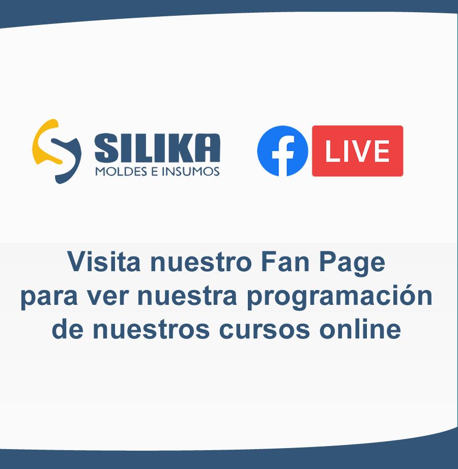 fan-page-silika